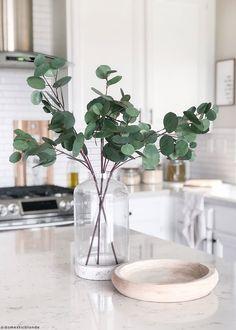 Shop premium artificial plants like this silver dollar eucalyptus for your countertop decor. Greenery Decor, Vases Decor, Plant Decor, Wedding Greenery, Estilo California, Eucalyptus Centerpiece, Eucalyptus Plant Indoor, Eucalyptus Leaves, Eucalyptus Shower
