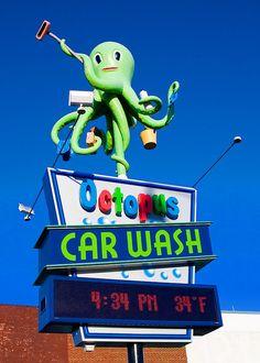Octopus' Garden by Todd Klassy, via Flickr