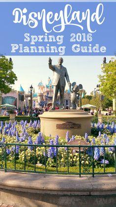 Disneyland Spring 20