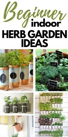 16 Best DIY Herb Garden Ideas All of these DIY herb garden ideas are SO good. There's ton of ways to create a homemade herb garden for the indoors or outdoors with these easy tutorials. Mason Jar Herbs, Mason Jar Herb Garden, Herb Garden Pallet, Herb Garden In Kitchen, Diy Herb Garden, Vertical Garden Diy, Easy Garden, Mason Jar Diy, Garden Ideas