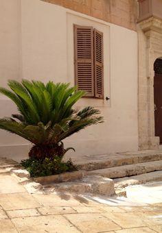 Malte   Malta Mdina