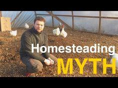 Mituri despre homesteding | Haivas.ro