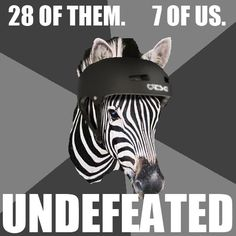 """To hell with """"Seven of us. A bajillion vantage points."""" What are we, horses? Hell no! We're fuckin' zebras! We don't make appearances at little girls' birthday parties, we don't pull carriages, and we definitely don't wear blinders. Now get out there and ref some fuckin' roller derby.    Via 'Interrobang Yerdehd'  Can't say I disagree!"""