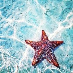Not all stars can be seen in the sky