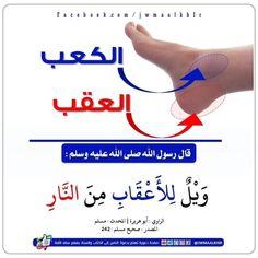 Prayers, Religion, Peace, Islamic, Prayer, Beans, Sobriety, World