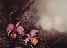 Martin Johnson Heade Paintings-Two Orchids in a Mountain Landscape, c.1870