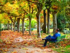 """Salvador (Frenegal de la sierra): """"Me transmite mucho bienestar la soledad, el chasquido de las ardillas sobre las hojas, el susurro al jugar el viento con las ramas, el sonido de la fuente de fondo. El otoño tiene momentos mágicos"""""""