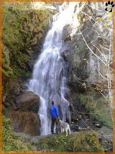 www.dogwalktrail.com vakantie met de hond Zell Am See, Doge, Waterfall, Outdoor, Instagram, Kaprun, Outdoors, Waterfalls, Outdoor Games