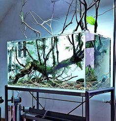 21 Best Aquascaping Design Ideas to Decor Your Aquarium - Tips Inside - homelovers Fish Aquarium Decorations, Aquarium Setup, Home Aquarium, Nature Aquarium, Aquarium Design, Aquarium Fish Tank, Aquarium Terrarium, Terrariums, Planted Aquarium
