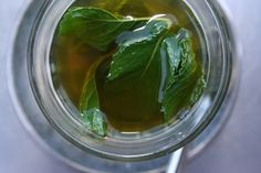 When to Pick Mint Leaves for Tea?
