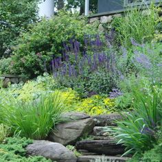 Residential Steep Slope Landscaping Design, Pictures, Remodel, Decor and Ideas - page 10