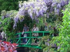 need to upload pic of my hubby and his family on Monet's bridge w/wisteria. Fond memories