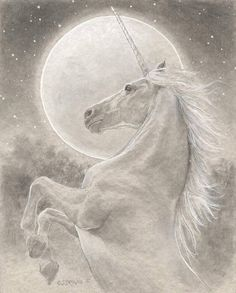 Image shared by Amy Melampy. Find images and videos about art, fantasy and unicorn on We Heart It - the app to get lost in what you love. Fantasy Unicorn, Unicorn And Fairies, Real Unicorn, The Last Unicorn, Unicorn Horse, Unicorns And Mermaids, Unicorn Art, Fantasy Art, Magical Unicorn
