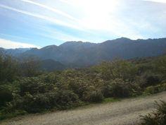 Cabrales, picos de Europa, Asturias