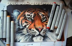 marker copic drawings markers drawing tiger draw fun pens sketch easy project paint copics comic using done acrylic