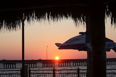 Sunset at the Tiki Bar at the Sheraton on Charlotte Harbor    Punta Gorda Florida Daily Photo
