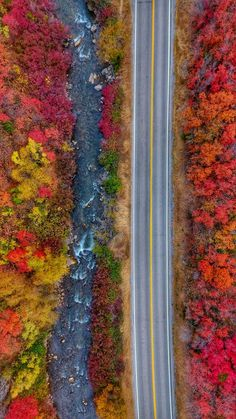Logan Canyon transforms into hues of red, purple, yellow and so much more. Seasons In The Sun, Character And Setting, Colorful Trees, Open Your Eyes, Walk In The Woods, Birds Eye View, Bullet Journal Inspiration, Nature Photos, Mother Nature
