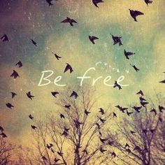 One of my goals for this year. To be free, mentally and to not cage myself up as humans tend to do.