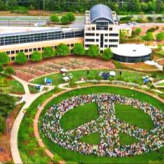 Peace Rally!!  Largest Human Peace sign