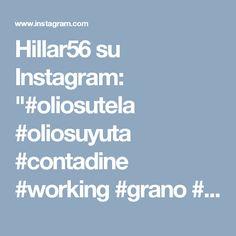 """Hillar56 su Instagram: """"#oliosutela #oliosuyuta #contadine #working #grano #landscape #artist #paint🎨 #dipingere #dipinti #art🎨 #collezioneprivata #525…"""""""