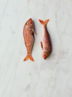 Recipes on Blondiechef's Portfolio Red Mullet, Fish Recipes, Food Styling