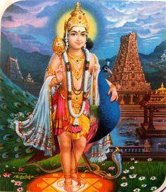 Lord Murugan/Skanda/Kartikeya/Subramaniam/Tandayuthabani/Kumaraswamy/Arumugam