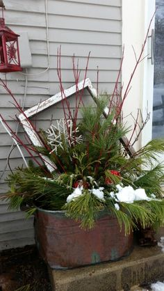 2015 Christmas decor. Copper boiler and greens.