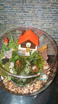 Terrarium, Gingerbread, Home Decor, Doggies, The Creation, Terrariums, Decoration Home, Room Decor, Ginger Beard
