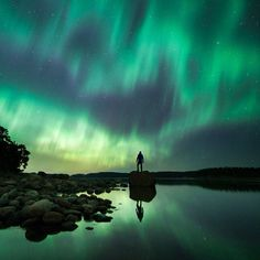 This Guy Takes Nature Photography To A Whole New Level - Dose - Your Daily Dose of Amazing