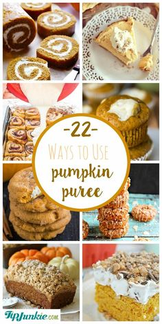 The best Pumpkin Recipes including pumpkin soup recipe, pumpkin puree recipes for pumpkin cake, bread, pie, bars and muffins. Your family will love these… Recipe Using Pumpkin, Pumpkin Puree Recipes, Pureed Food Recipes, Best Dessert Recipes, Fun Desserts, Holiday Recipes, Baking Recipes, Pumpkin Pie Dip, Pumpkin Ice Cream