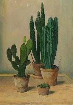 'Study of Cacti' by Austrian painter Robert Knaus (b.1900). Oil on painter's board, 19.25 x 14 in. source: Bonhams Auctioneers. via still life quick heart