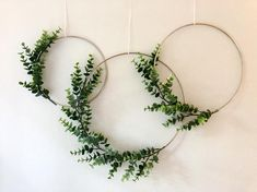 Metal Hoop Wreath Simplistic Shabby Chic Green Eucalyptus Wreath Succulent Gold or Brass Simple Wedding Baby Nursery Rustic Metall Hoop Kranz simpel Shabby Chic grün Eukalyptus Kranz saftig Gold oder Messing einfache Hochzeit Baby Kindergarten rustikal Rustic Nursery, Nursery Decor, Rustic Baby, Nursery Ideas, Diy Projects Nursery, Baby Decor, Gold Nursery, Rustic Room, Nursery Modern