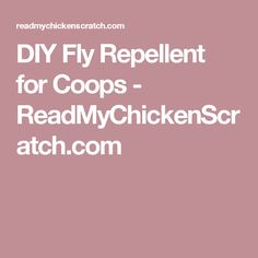 DIY Fly Repellent for Coops - ReadMyChickenScratch.com
