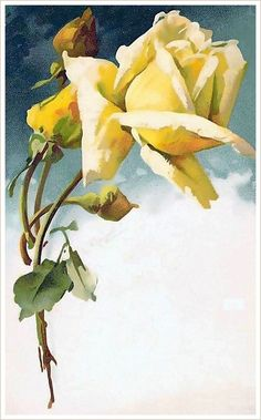 Белая невинность и Желтая надежда. Открытки. Ч - 3. Обсуждение на LiveInternet - Российский Сервис Онлайн-Дневников