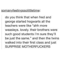 the teachers' reactions to when Fred & George started Hogwarts (headcanon accepted! Harry Potter Tumblr Posts, Harry Potter Love, Harry Potter Universal, Harry Potter Fandom, Harry Potter Memes, Potter Facts, Ravenclaw, Ron Weasly, Must Be A Weasley