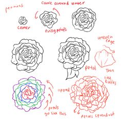 How to draw roses - Google Search  Honestly this has nothing to do with my recent obssession with OHSHC
