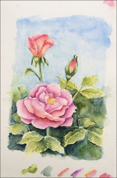 How To Paint Realistic Watercolor Roses tutorial.... 5-wash-glaze-test