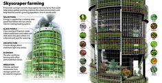 Le Vertical Farm rappresentano una vera rivoluzione nell'agricoltura. Si tratta…