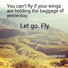 You can't fly if your wings are holding the baggage of yesterday. Let go. Fly.  Steve Maraboli