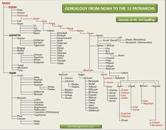 Bible Teachings - Genealogy Chart from Noah to the 12 Patriarchs. Bible Study Materials, Bible Study Tools, Scripture Study, Bible Family Tree, Genesis Bible Study, Bible Timeline, Genealogy Chart, Genealogy Humor, Bible Mapping