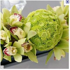 Lime green cymbidiums reception wedding flowers,  wedding decor, wedding flower centerpiece, wedding flower arrangement, add pic source on comment and we will update it. www.myfloweraffair.com can create this beautiful wedding flower look.