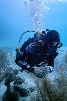 Diving at Directorsbaai and Double Reef on http://curacao.for91days.com
