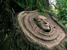 Keith Jennings Carves Mysterious Spirits into Living Trees