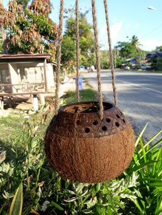 1 Pc Two tone style handcrafts coconut shell hanging planter