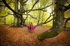 Fairytale Forest Self-Portrait I by MiriamPeuser on DeviantArt