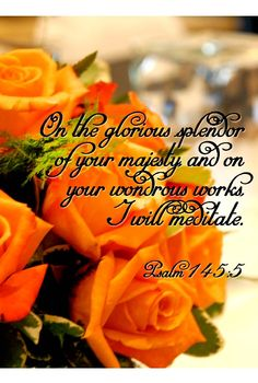 I will meditate on the glorious splendor of Your majesty, And on Your wondrous works. [Psalm 145:5]
