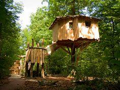 Cabane des Tourtereaux 2 pers - Parc de Sainte-Croix