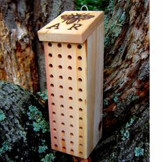 Mason Bees - adding some nests to the yard this year!