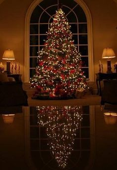 75 Creative Christmas Tree Decorating Ideas That Will Bring Joy To Your Home – Christmas Decorations Hanging Christmas Lights, Silver Christmas Decorations, Christmas Tree Themes, Noel Christmas, Christmas Traditions, Best Christmas Tree, Christmas Nails, Decorating For Christmas, Decorated Christmas Trees