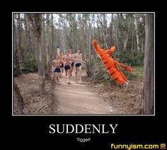 tigger jump runners | Demotivational Pics | Funnyism Funny Pictures